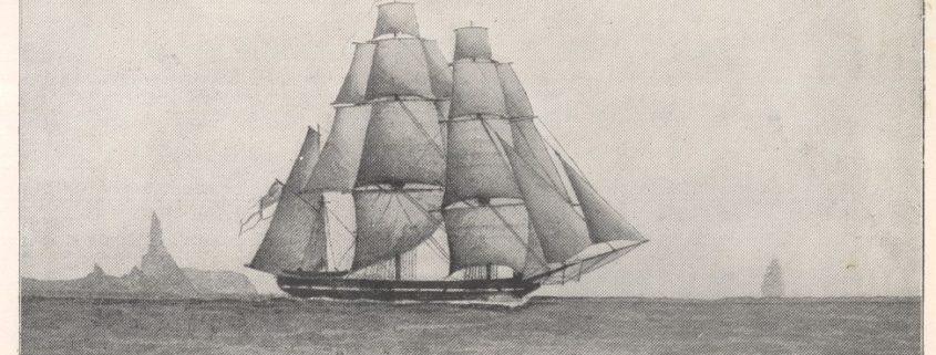 źródło: http://darwin-online.org.uk/graphics/illustrations.html